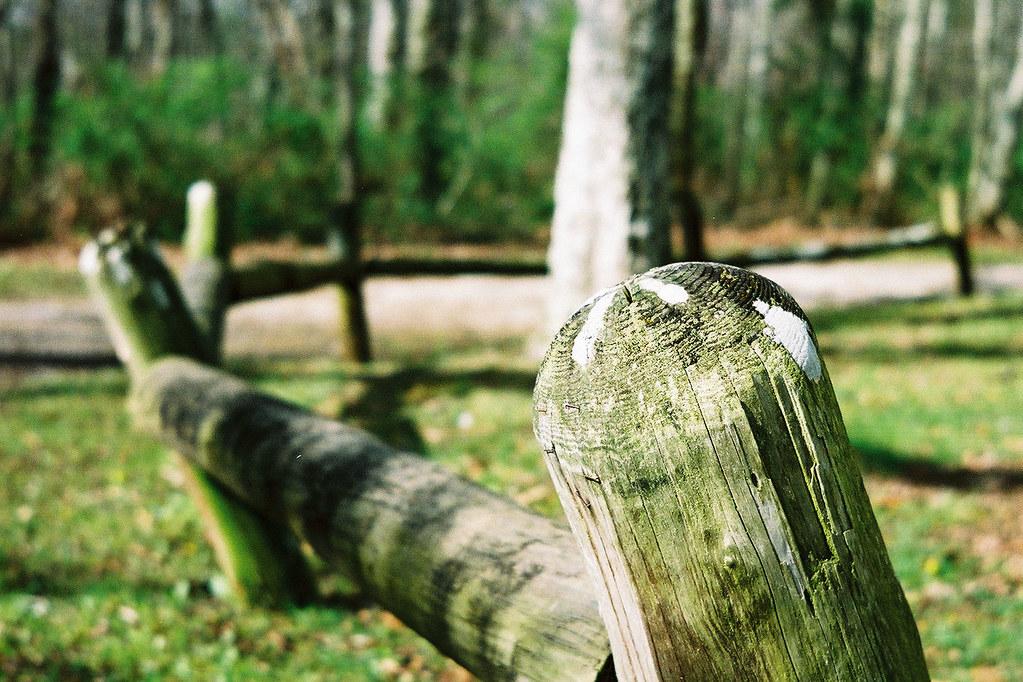 Fencepost