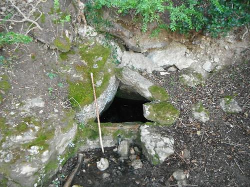 Font del Pollancre