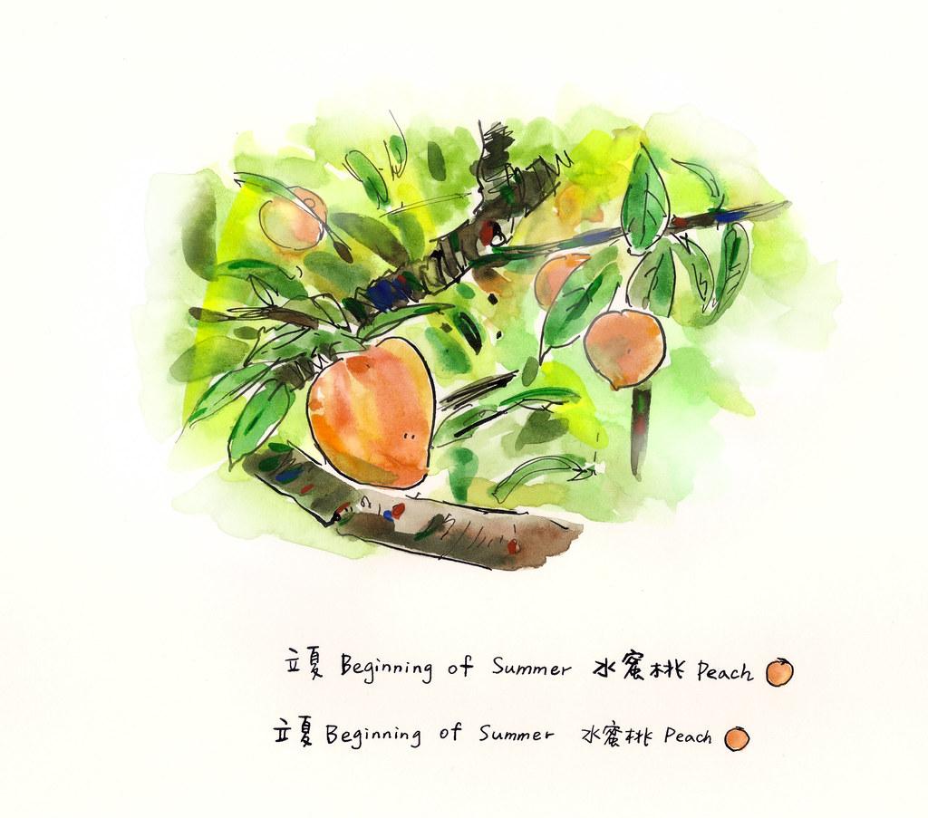07立夏水蜜桃