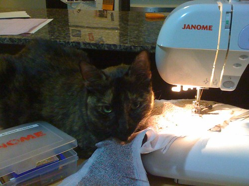 Saffron doesn't want me to sew