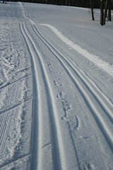 Ski Trail 4496