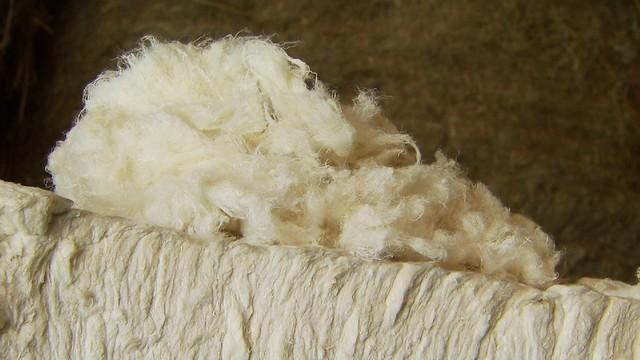 Flax Clothing