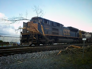 Train -vs- tree