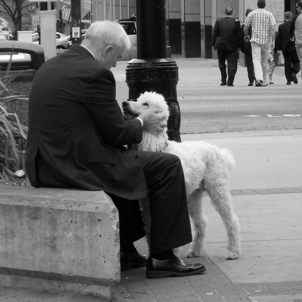 A man communes with his dog on an urban street