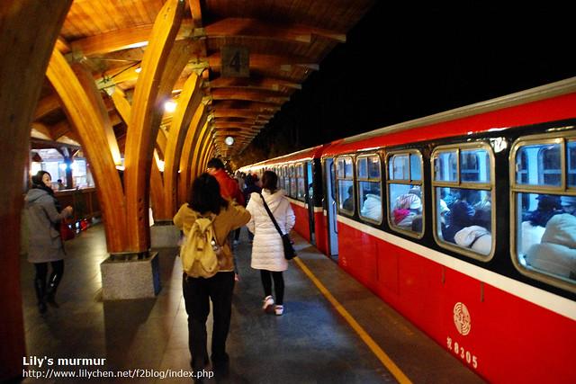在阿里山月台,準備搭觀日火車上祝山去囉!