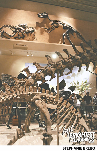 Smithsonian Dinosaur Exhibit Photos Brightest Young Things Stephanie Breijo39