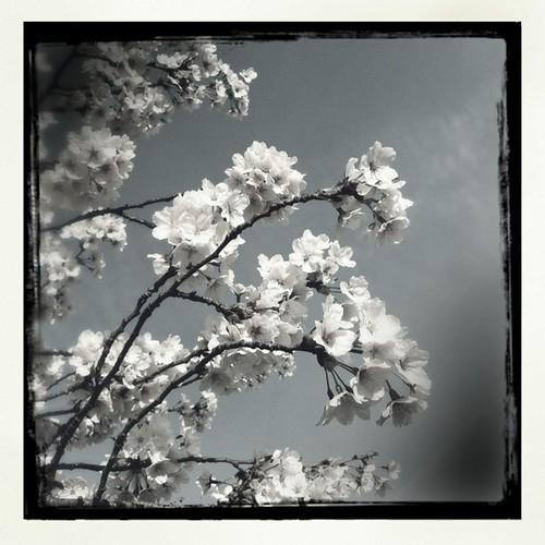 April 15, 2012 at 05:50PM