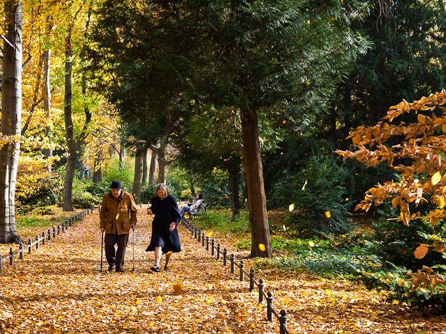 DE Landscape 08: Tiergarten Old Couple