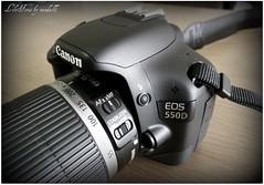 EOS 550D detail