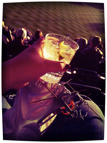 Vodka tonic, knitting, sunshine, and baseball