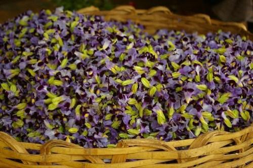 paticheri_pondy flower market (7)