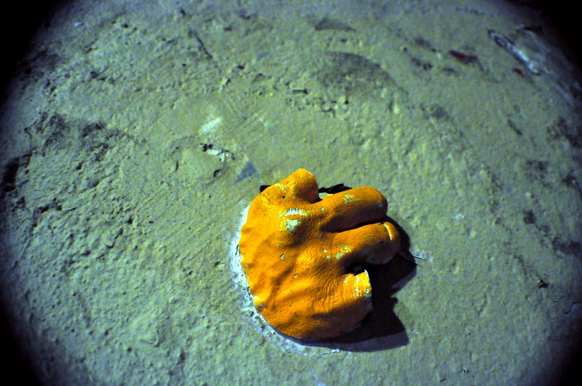 Gregos Hand