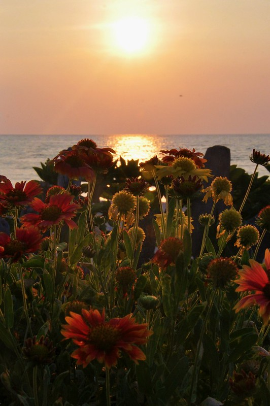 Sunrise (April 20, 2012)