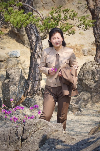 Musk Deer Mountian North Korea