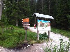 Weg 103 zur Zsigmondyhütte