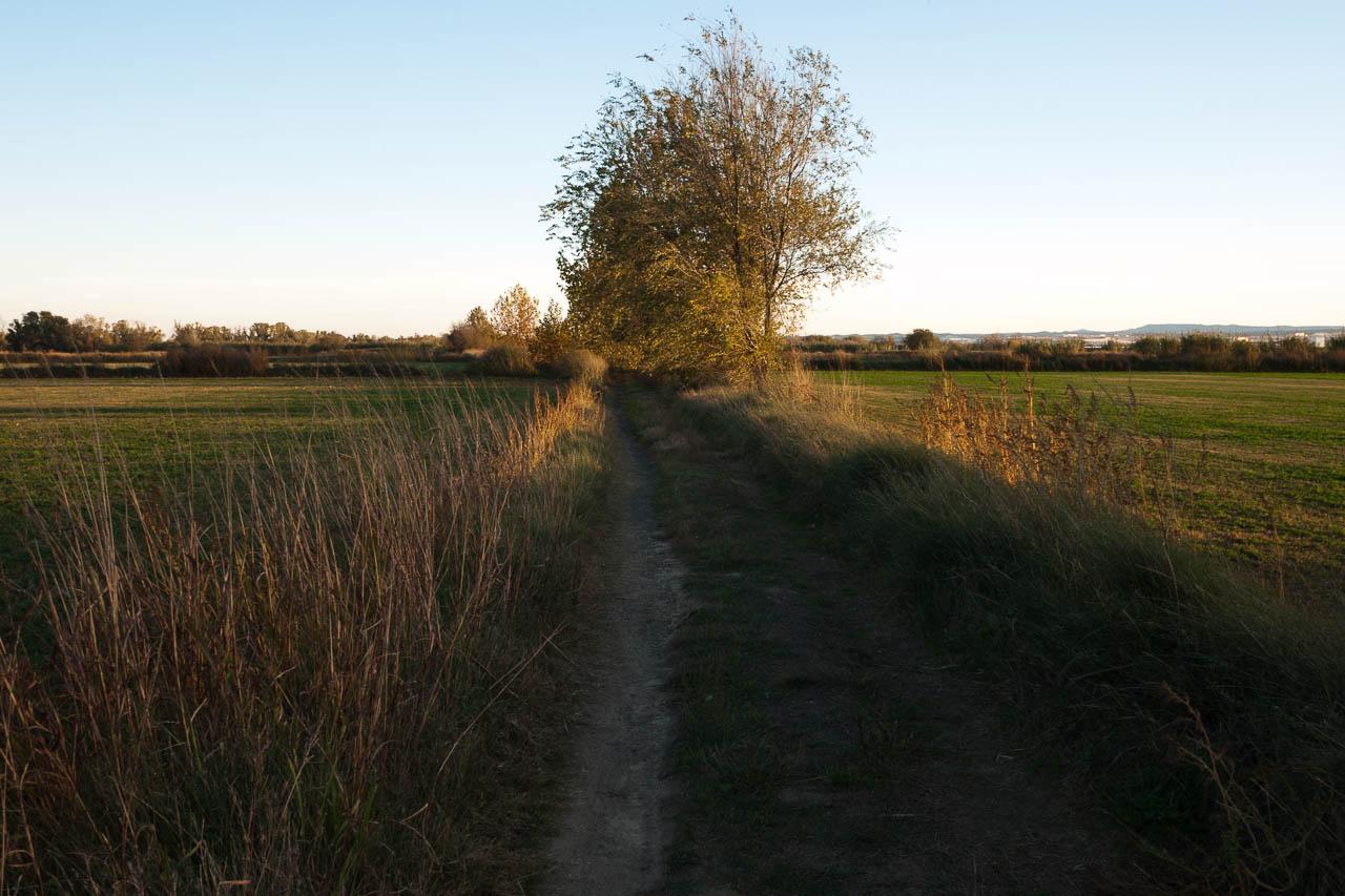 Soto de Cantalobos