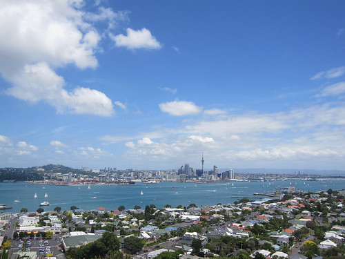 View from Mount Victoria