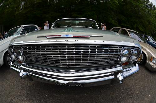 smooth impala (1)