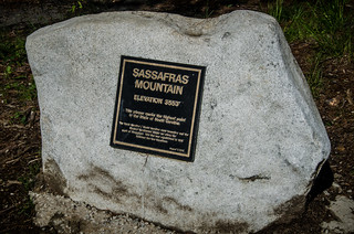 Sassafras Mountain Marker