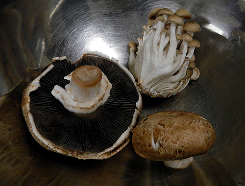 Loire Valley Cooking: a Selection of Mushrooms