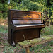 20130505-sam_bailey_forest_piano-013