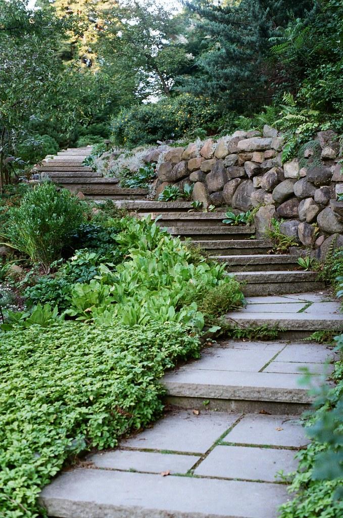 Steps