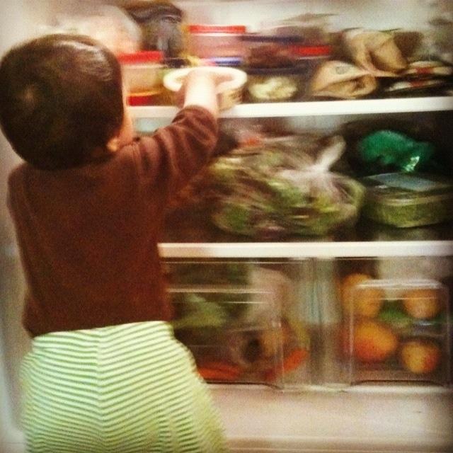 Inspecting the fridge...