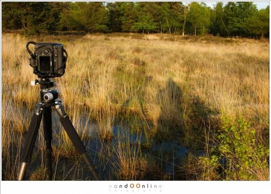Pas op met 360° panorama's als de zon schijnt want je eigen schaduw, èn die van de camera, komen ook op de foto.