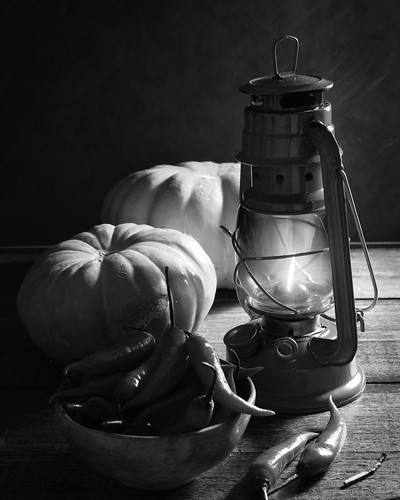 pumpkins and chilli (bw) by Luiz L.