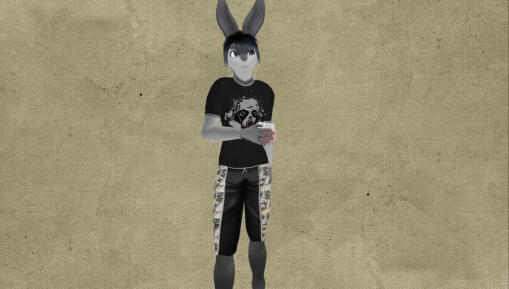 BunnyBlog6