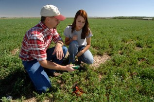 """""""Beginning farmers are a key to twenty-first-century agriculture,"""" says Agriculture Secretary Tom Vilsack."""