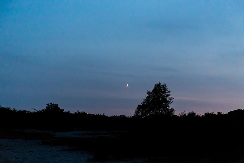 Moonrise over Upton Heath