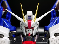 Metal Build Freedom Review 2012 Gundam PH (110)