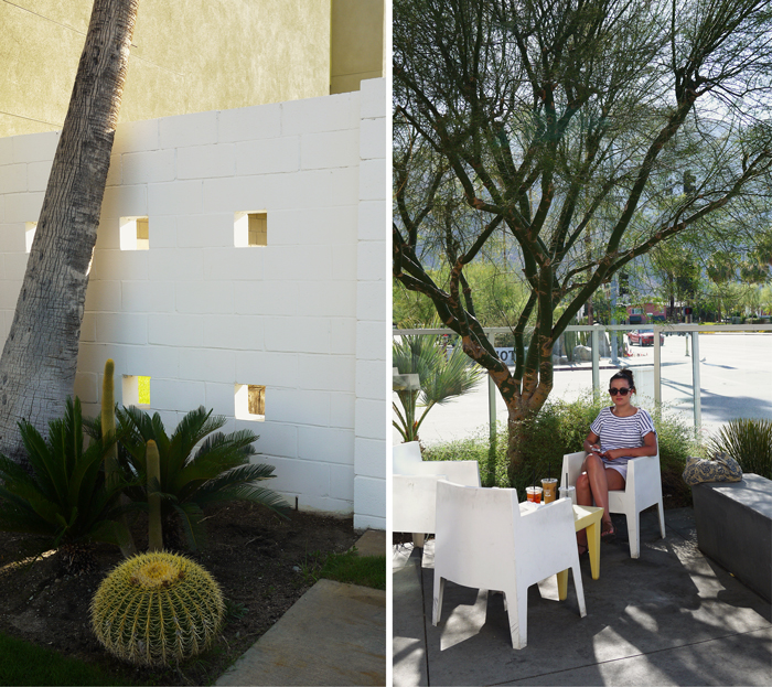 Palm Springs Architecture Tour 4