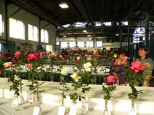 2013-08-24 NYS Fair 046