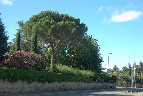 Inicio de la Cuesta de Beloso, al final de la avenida de Baja Navarra, una de las salidas de Pamplona y que une Pamplona con Burlada.