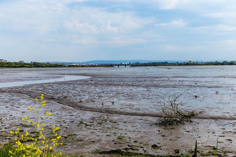View towards Poole looking across Creekmoor Lake