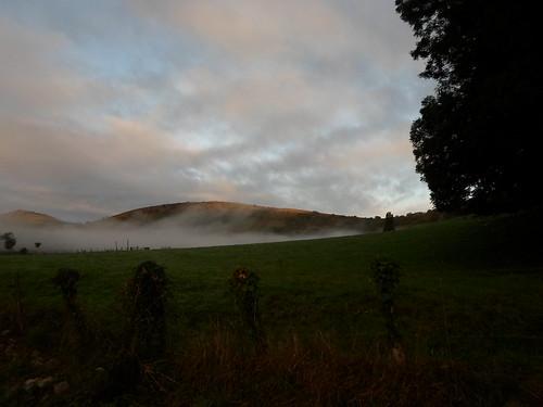 Cloudrest