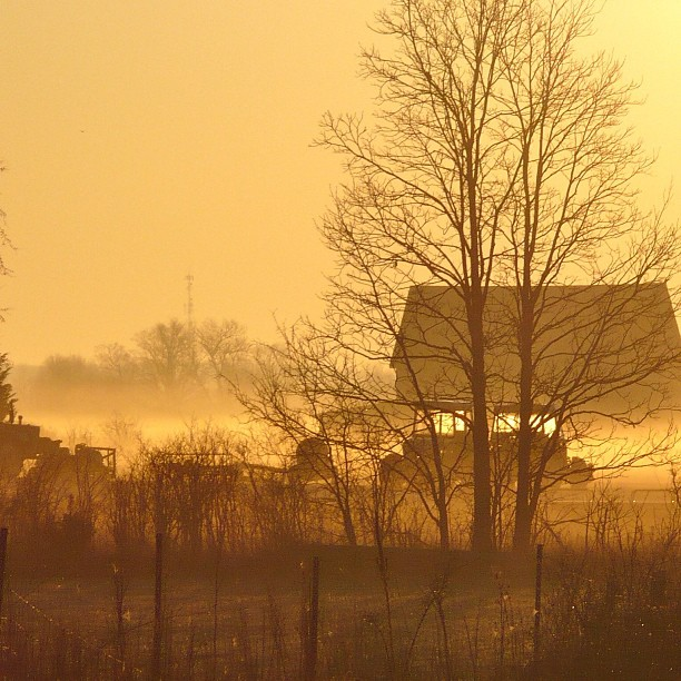 July 18 - favorite picture {my all time fav; taken in March 2011, early in the morning with no filters or post processing}. #photoaday #nofilters #morning #fog #spring #farm #tractor #princeedwardcounty #sunrise #golden