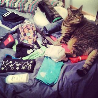 """""""Hey mom, I help you pack for Ragnar, k?"""""""