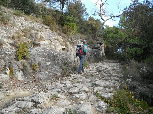 Camí del Fabregar