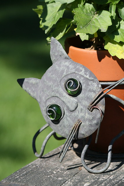 crazy kitty planter