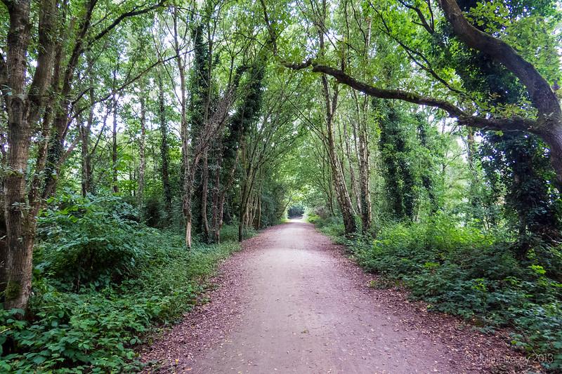 Castleman Trailway at Creekmoor