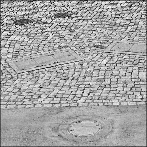 circle and quadrat