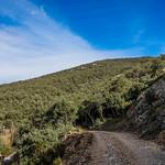 13_Cantallops_Girona