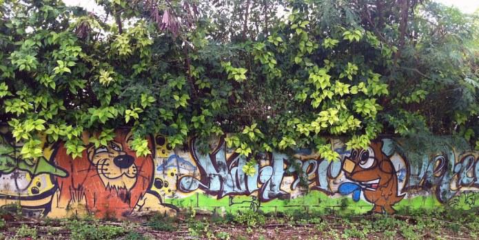 graffiti in shrubbery 2