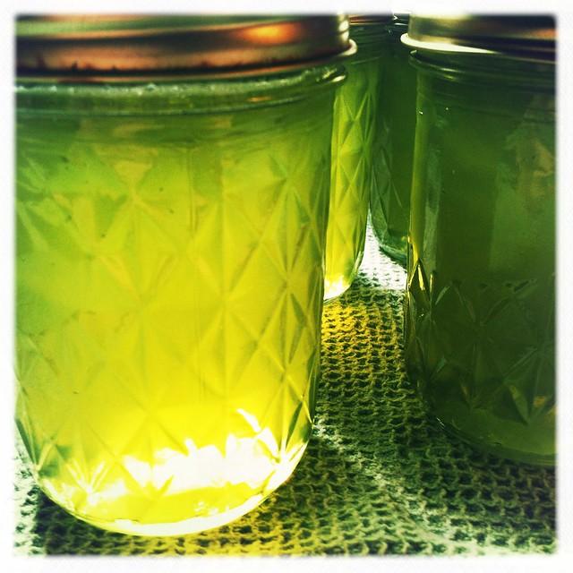 Basil Lemon Jelly
