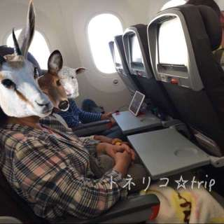 関空ケアンズ便のジェットスターの機内
