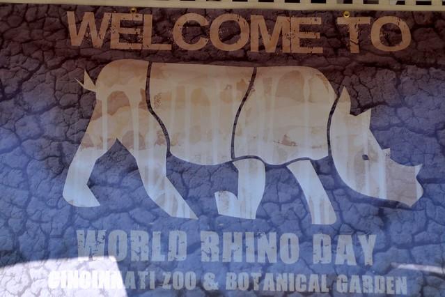 World Rhino Day Banner
