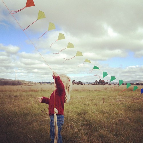 Kite flying in Collector.